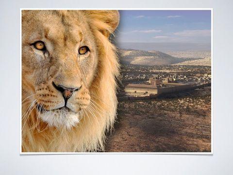 Le lion de la tribu de Juda est Jésus-Christ lui seul est digne d'ouvrir le livre aux 7 sceaux. Le lion est associé au courage, à l'autorité, la royauté, la justice. Jésus a courageusement fustigé les pharisiens et a subi les coups, donné sa vie pour nous