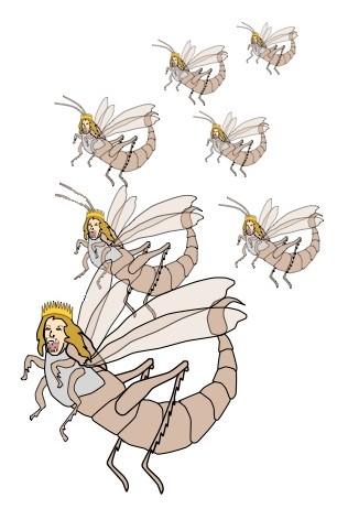 Le premier malheur correspond à la cinquième sonnerie de trompette. Alors que le monde se trouve plongé dans les ténèbres spirituelles, une nuée de sauterelles se répandent sur toute la terre, avec des couronnes, des cheveux de femme, des dents de lions.