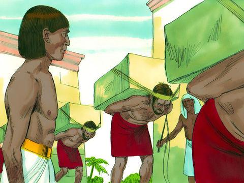 Les herbes amères représentaient la vie amère que les Israélites avaient vécue en esclavage.