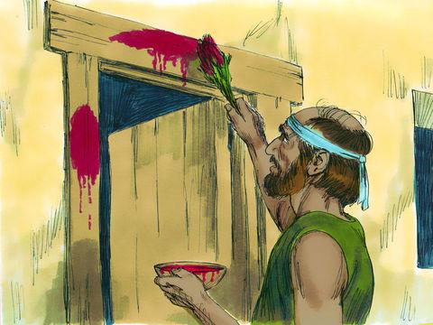 Jéhovah demande aux Israélites de badigeonner les montants et le linteau de leurs portes avec du sang d'agneau, appliqué à l'aide d'un bouquet d'hysope, afin de ne pas subir la même destruction que les Égyptiens. Le sang de l'agneau leur sauvera la vie.