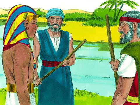 Lors de la première plaie d'Egypte, Moïse demande à Aaron de prendre son bâton et d'étendre sa main sur les eaux d'Egypte. Les eaux des rivières, des étangs, des canaux et des réservoirs sont changées en sang. Les poissons qui sont dans le Nil meurent.