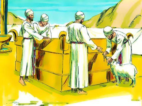 L'autel construit par Moïse, dans le parvis du tabernacle. Les 4 cornes de l'autel aux 4 coins pour attacher les animaux sacrifiés