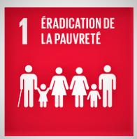 L'ONU regroupant 193 des 197 pays, représentée par la bête à 7 têtes qui a été blessée (SDN) et qui a repris vie (ONU) dans le livre de l'Apocalypse, poursuit les objectifs les plus élevés et les plus nobles qui soient. L'éradication de la pauvreté.