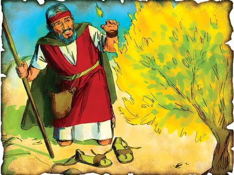 Dieu appelle Moïse depuis le buisson ardent. Est-ce vraiment Dieu qui est présente dans le buisson? Non, c'est un ange. L'ange de Jéhovah lui apparut en flamme de feu, du milieu du buisson. Et Moïse vit que le buisson était tout en feu, sans se consumer.