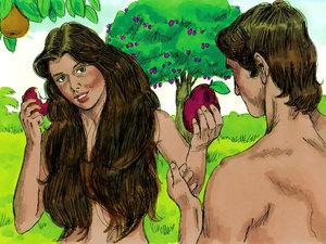 Adam et Eve ont pris du fruit de l'arbre de la connaissance du bien et du mal ils ont voulu décider par eux-mêmes ce qui est bien ou mal