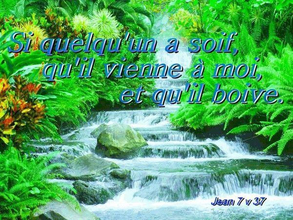 L'eau de la vie sort du trône de Dieu et de l'Agneau, elle est gratuite. Elle assainit, vivifie, donne l'espoir. Abreuvons- nous de l'eau de la vie, la connaissance de Dieu. Jésus qui nous guide vers cette eau en nous apportant la connaissance de Dieu.