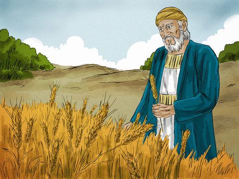 Afin de nous faire prendre conscience de l'absurdité de celui qui passe sa vie à amasser des biens matériels plutôt que d'être riche pour Dieu, Jésus nous raconte la parabole de l'homme qui amasse des biens matériels.
