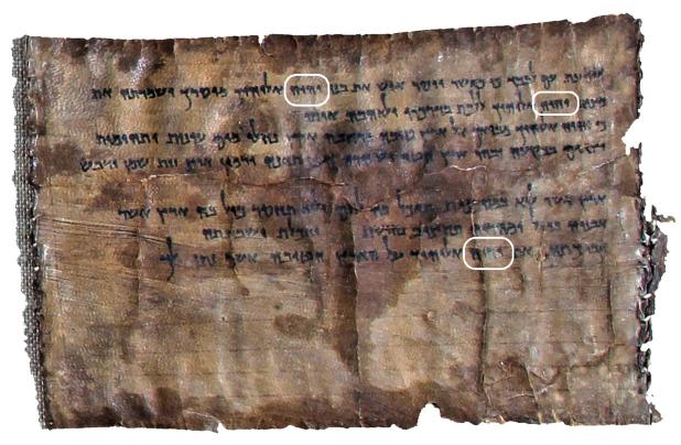 4Q41 ou 4QDeuteronomy, découvert dans la grotte 4, est un manuscrit datant du 1er siècle av J-C. Le manuscrit est composé de deux fragments de cuir cousus ensemble et contenant 2 passages du Deutéronome dont la plus vielle copie copie des 10 commandements