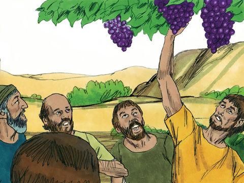 Josué et Caleb essaient de les raisonner, de leur donner du courage en leur disant que le pays est excellent, c'est un pays où coule le lait et le miel. Ils ne feront qu'une bouchée de ses habitants car ils sont protégés par Jéhovah Dieu. N'ayez pas peur!