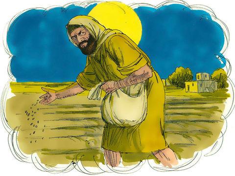 Dans sa parabole du semeur, Jésus nous fait comprendre que les faux enseignements apportés par les ennemis de Dieu se répandraient au sein du christianisme à l'image de la mauvaise herbe croissant au milieu d'un champ de blé.