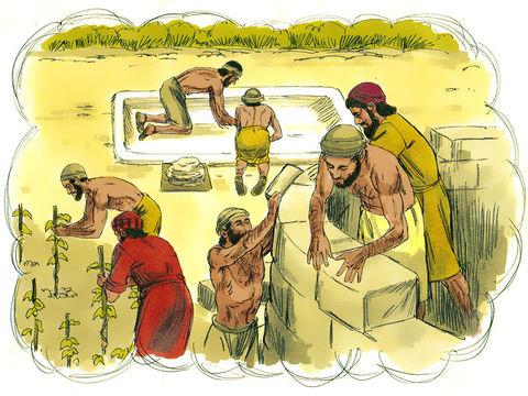 La Parabole de la vigne de Jésus-Christ. Le maître de la vigne confie sa vigne à des vignerons.