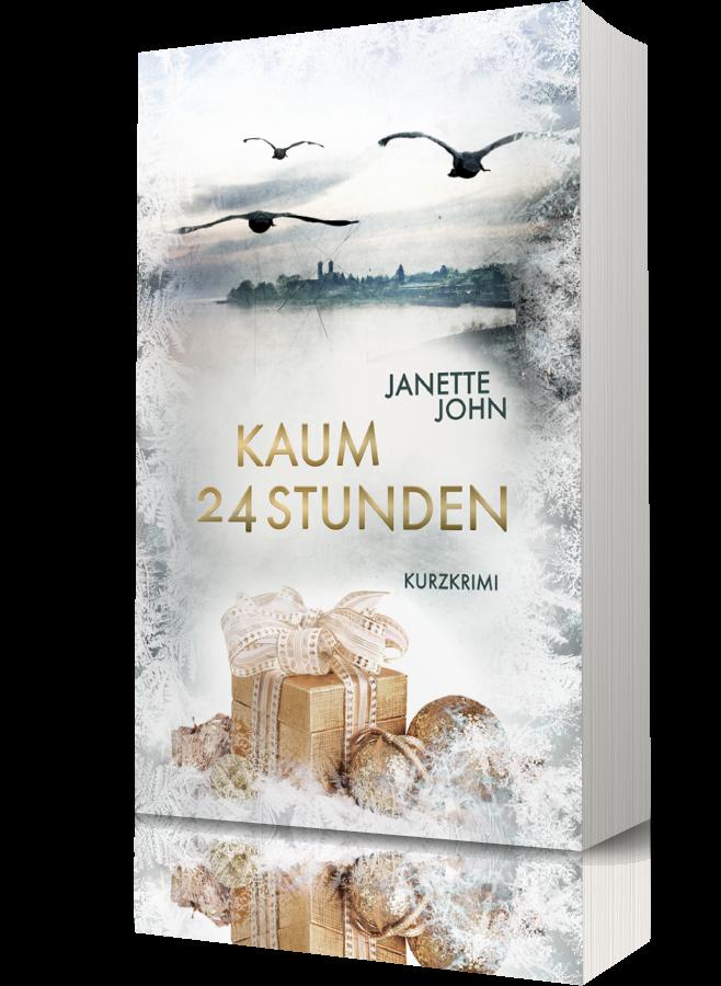 Kaum 24 Stunden (Kripo Bodensee 4)