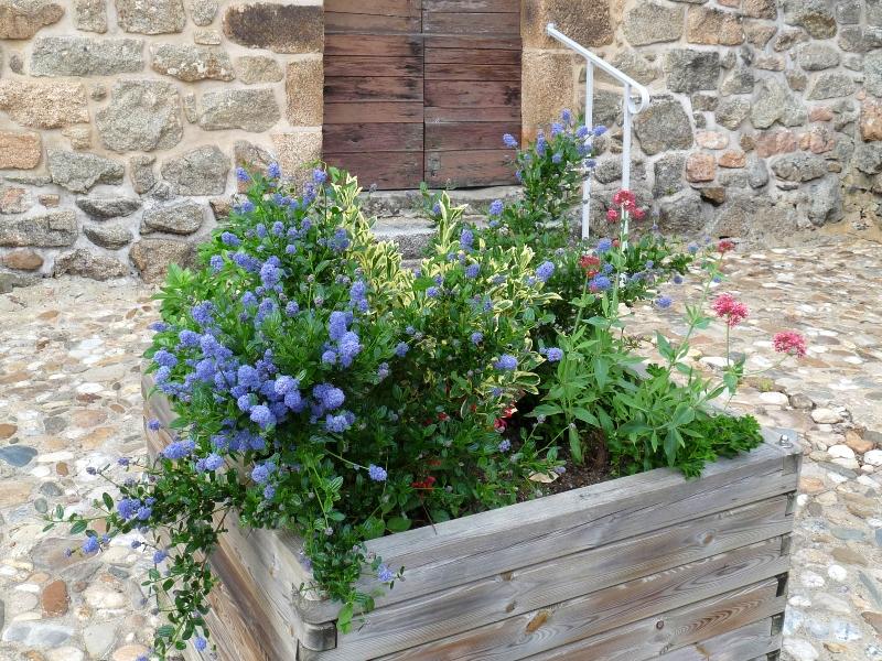Villages fleuris, Le Bas Ségala