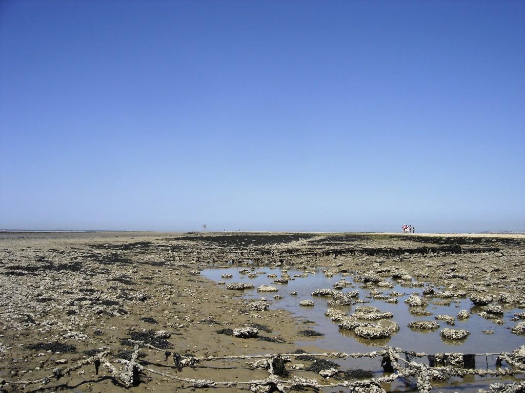 Au bout de la presqu'île à marée basse...