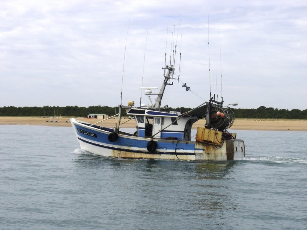 Promenade en bateau sur l'estuaire et vue sur l'activité de pêche