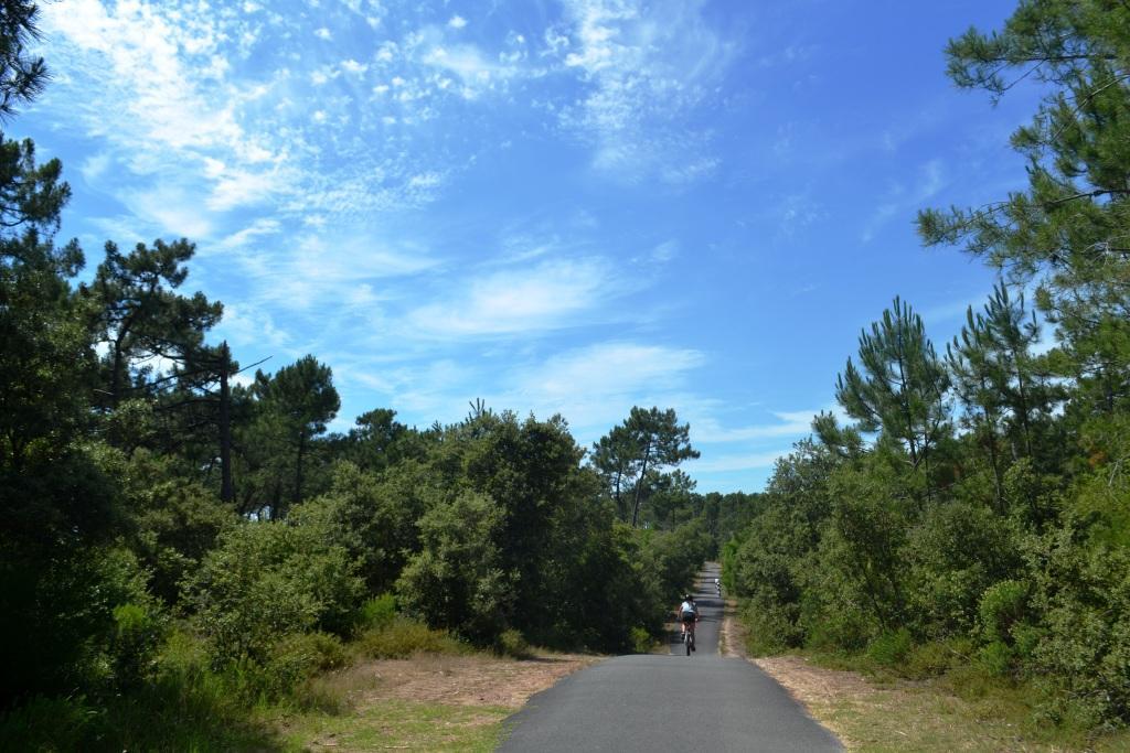 Portion de la Vélodyssée sur la côte sauvage royannaise