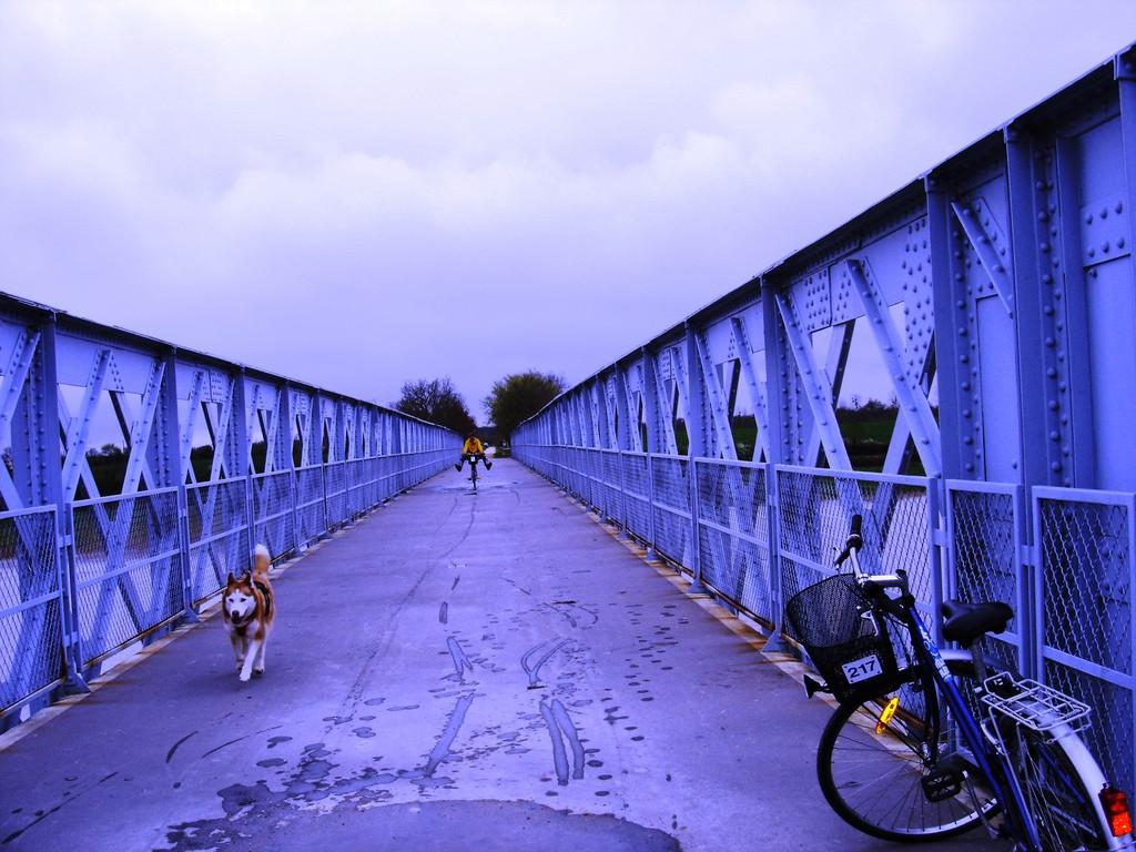 Le Pont de la Cèpe à Cabariot, à 5 mn en vélo du gîte !