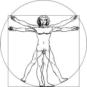 "Leonardo da Vinci  ""Der vitruvianische Mensch"""