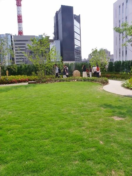 5階の植物園