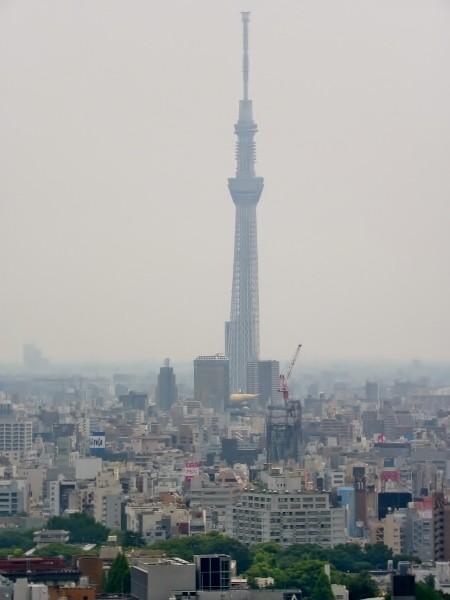 東京スカイツリー・・少し霞んでいます