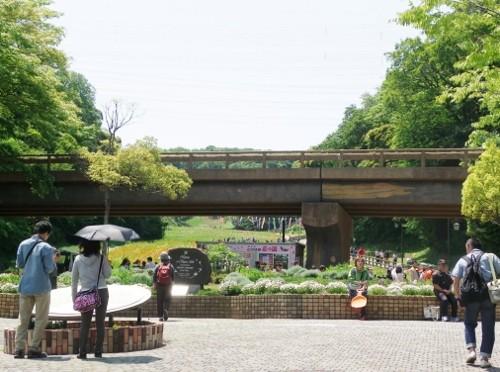 花の国 正面広場(フラワートレイン発着場)