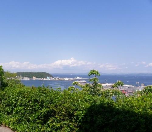 東京湾・・手前は久里浜港、遠方に房総半島が見えます