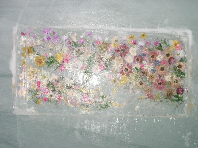 アイスパレス内『氷中の花』(ユングフラウヨッホ:3571m)