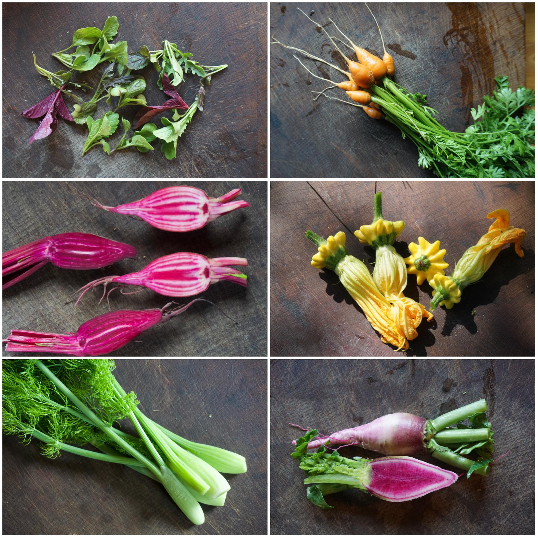 Frische Wildkräuter, essbare Blüten, rare Gemüsesorten