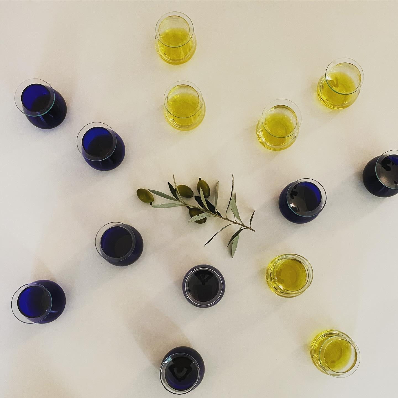 Olivenöl Tasting in der Olive Academy