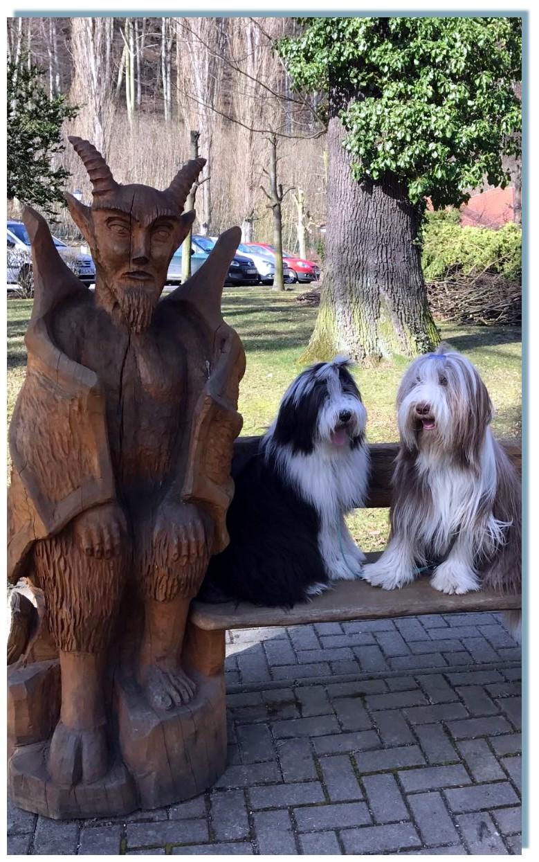Merle und Frieda sind kleine Globetrotterinnen und haben schon viel gesehen,  Das Meer, die Alpen und die Hexen im Harz, apropos Hexen