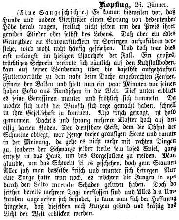 Eine Saugeschichte über eine Kunstsprung-Vorführung aus dem Kopfinger Pfarrhof!   (Neue Warte am Inn, 28.1.1888)