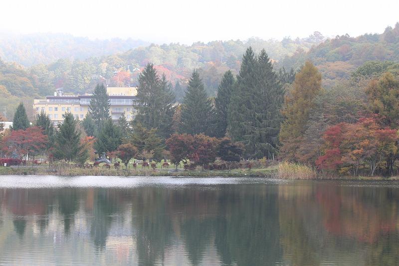 朝の静かな湖畔 喧騒を離れてしばし黙考