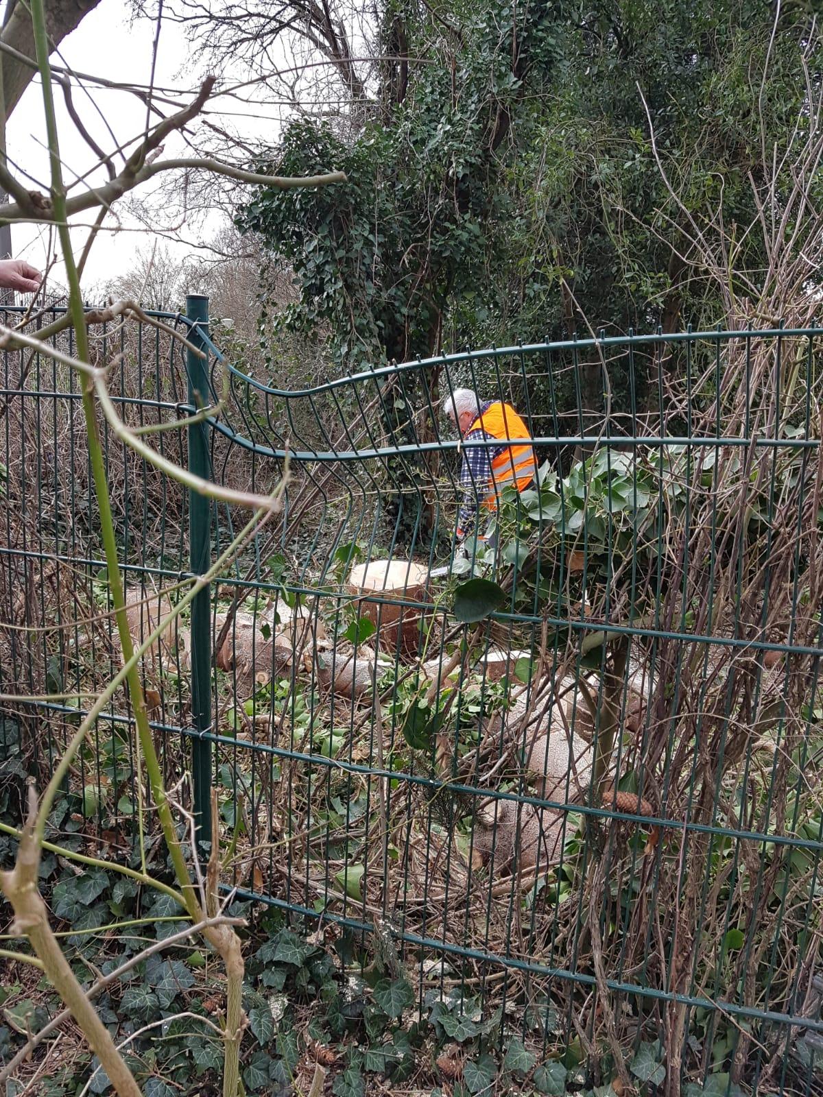 Der Zaun ist von der Fichte eingedrückt....