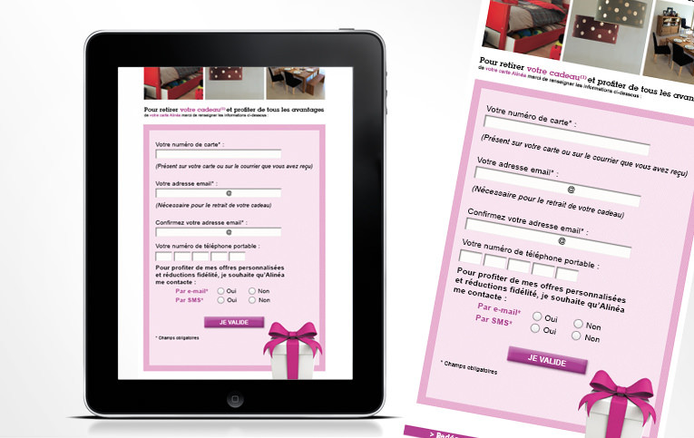 LSZ Communication - Graphiste - Directrice artistique freelance Nantes - #lepetitoiseaudelacom - Alinéa - Communication programme carte de fidélité - Landing - Agence caribou