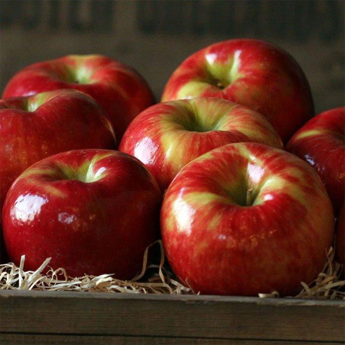 ăn táo giảm cân tự nhiên hiệu quả