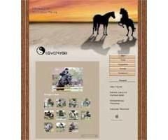 Pferdezucht, Entwurf für Website und Plakat/Flyer