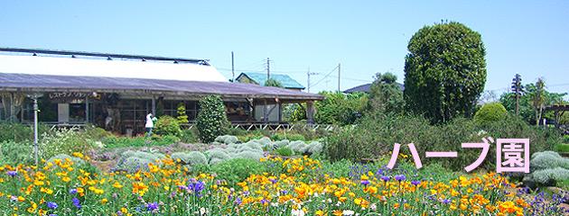 ガーデン 九十九里 ハーブ オートキャンプ場予約 九十九里ハーブガーデン