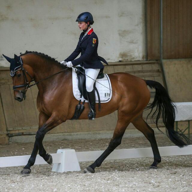 Vici Ammann mit Despina im Viereck