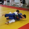 Judo Schülerturnier