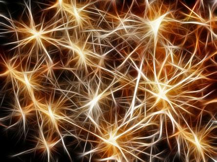 De nombreuses équipes de chercheurs qui tentent de « réparer » les axones ont identifié des protéines neuronales capables de favoriser ou d'inhiber la repousse.