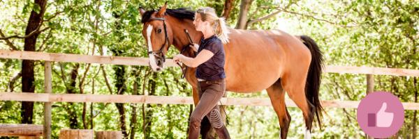 Vertrauen ins eigene Pferd