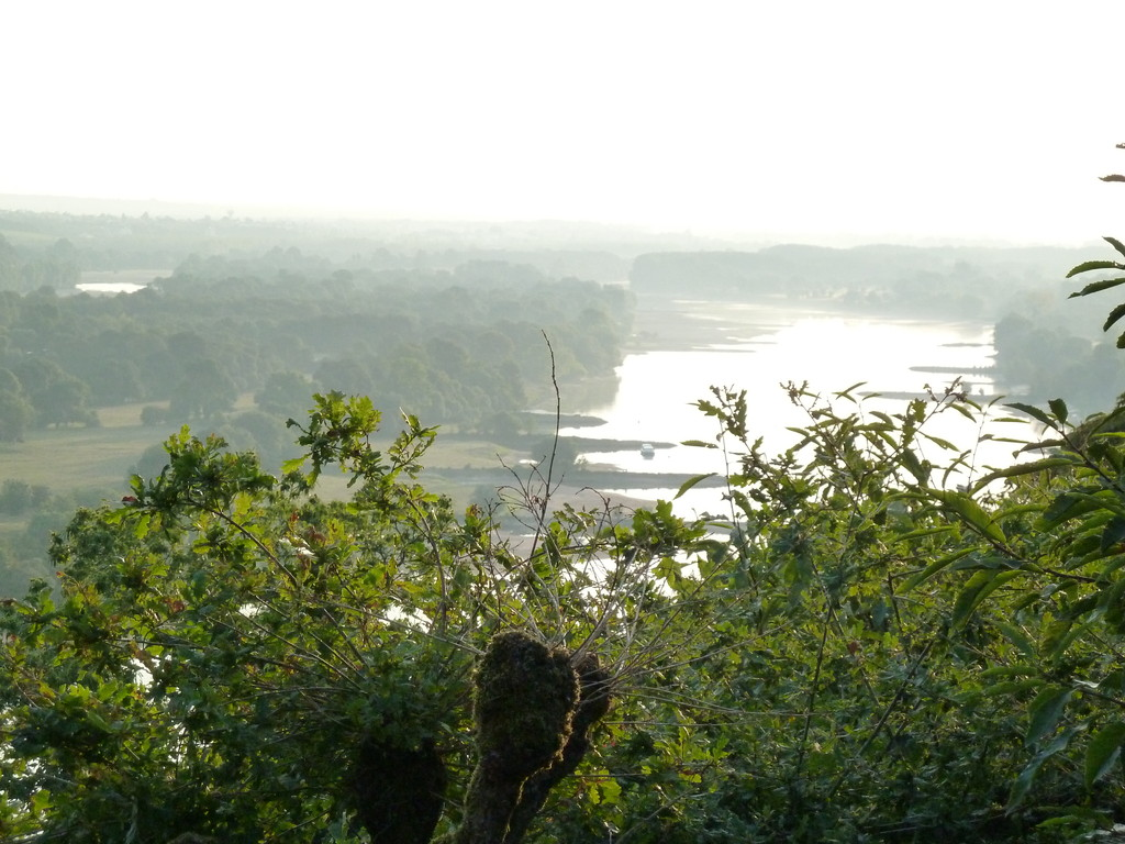 Blick in's Loiretal in der Nähe von Nantes