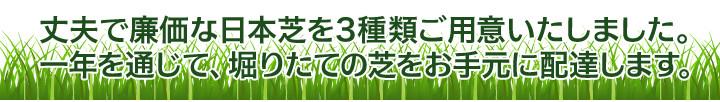 丈夫で廉価な日本芝を3種類ご用意いたしました。一年を通じて、堀りたての芝をお手元に配達します。