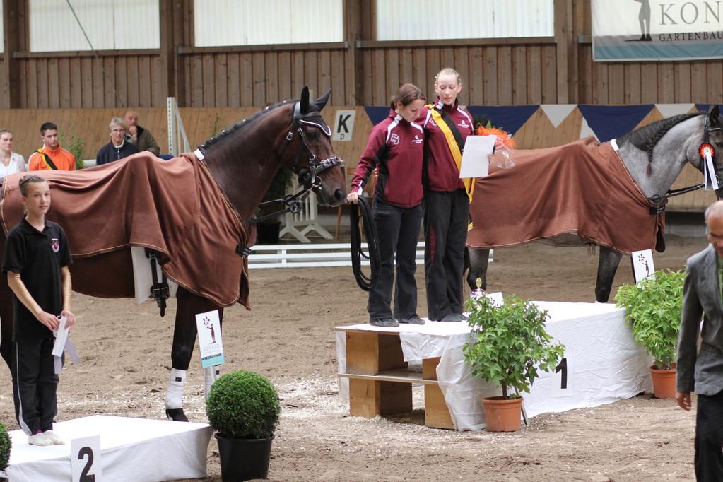 Pfalzmeister Einzelvoltigieren Junioren: