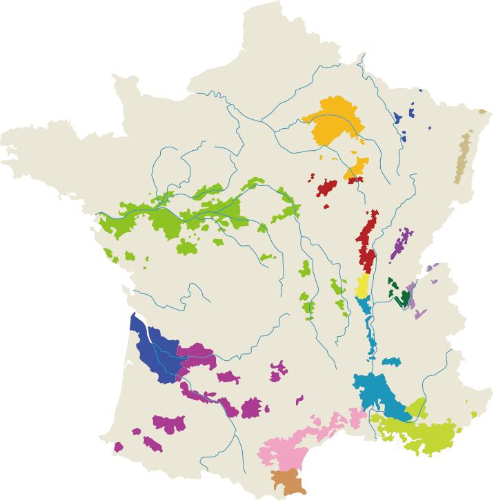 〔図〕フランス各地域のブドウ畑