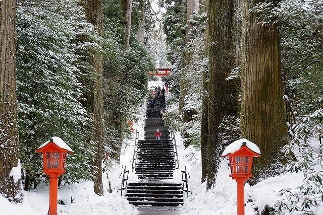 石段(参道)の上が箱根神社