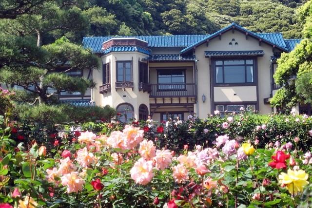 12) 文学館と薔薇をもう一度