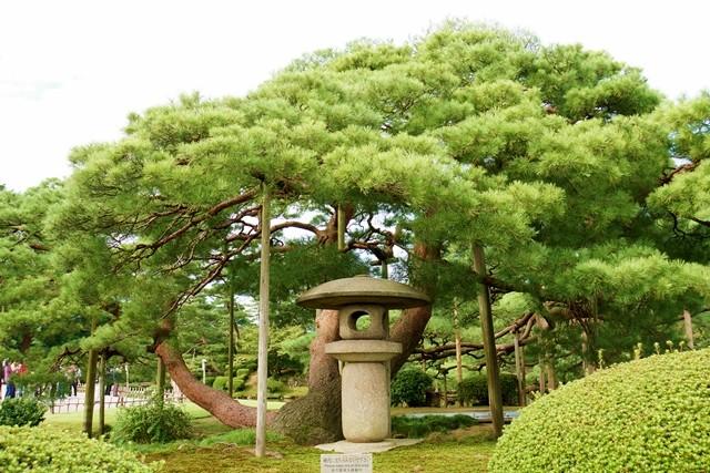 黒崎松と燈籠