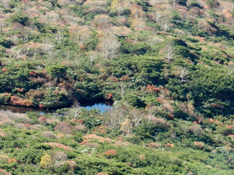 峰の茶屋へ向かう途中、池があり緑も多い