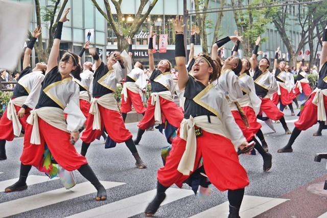 早稲田大学踊り侍